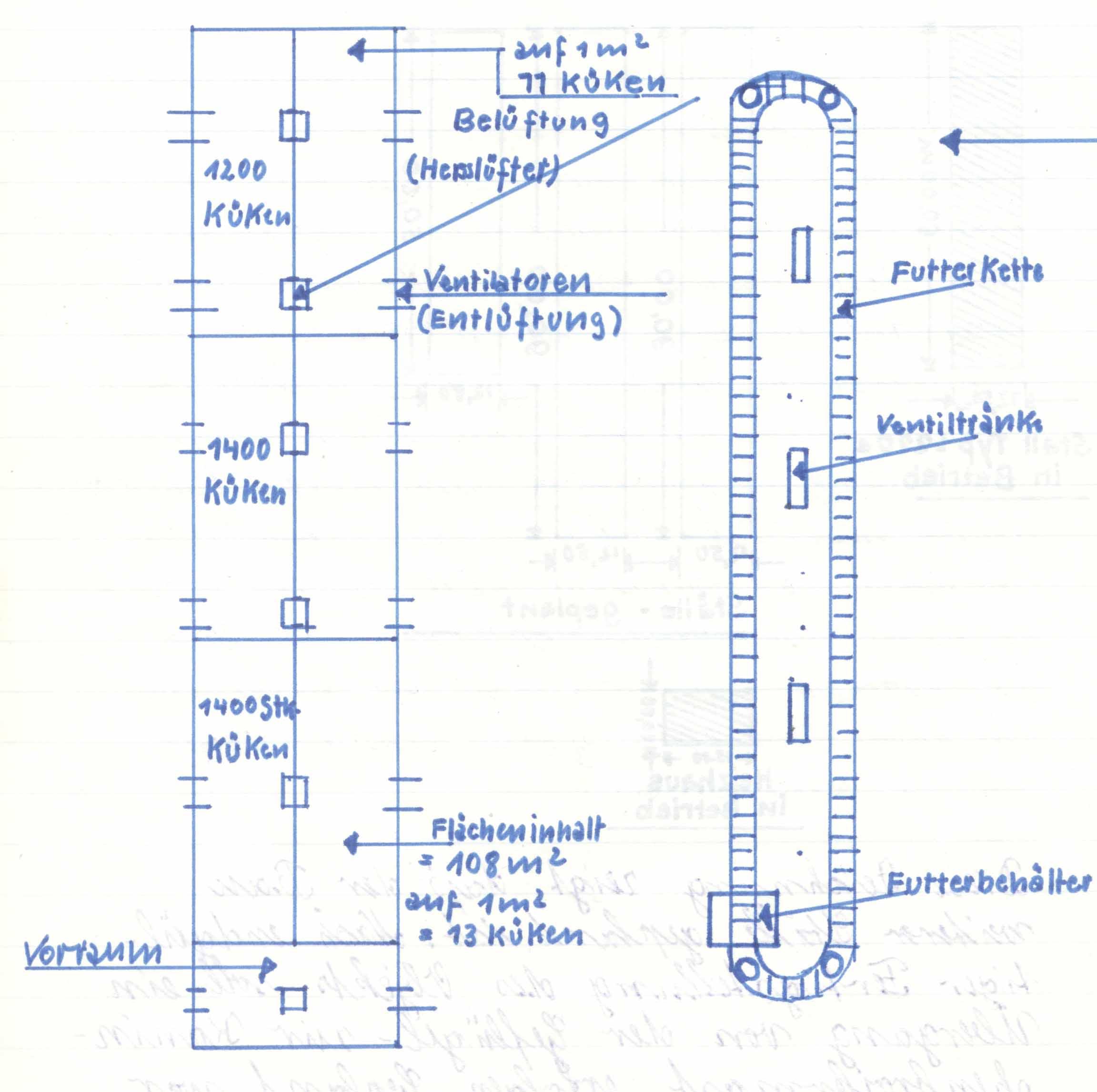 Die Broilermast in der LPG Mehrow